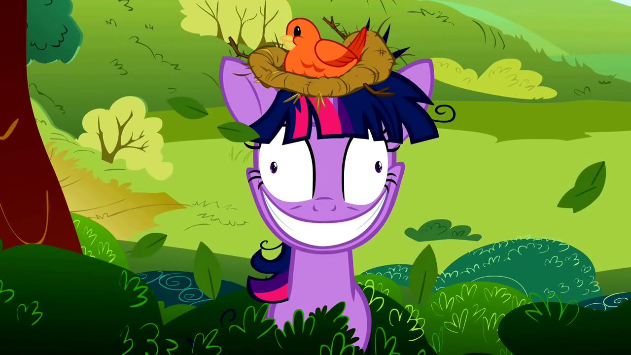 картинки мой безумный пони